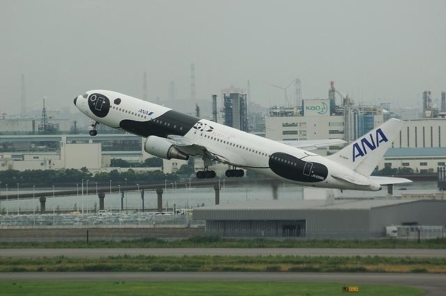 FLY!パンダ 5