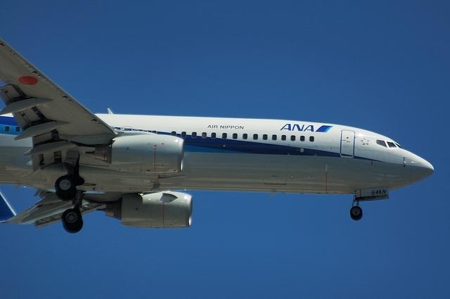 ANA Boeing737-800 2