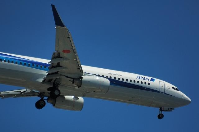 ANA Boeing737-800 3