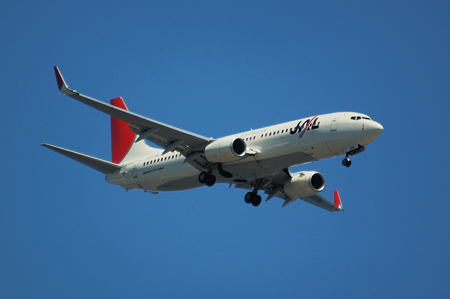 JAL Boeing737-800 2