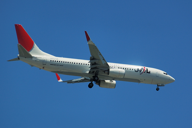 JAL Boeing737-800 3
