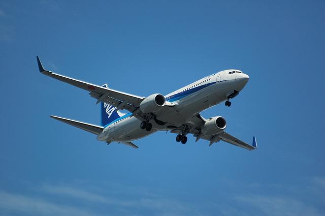 ANA Boeing737-800 1