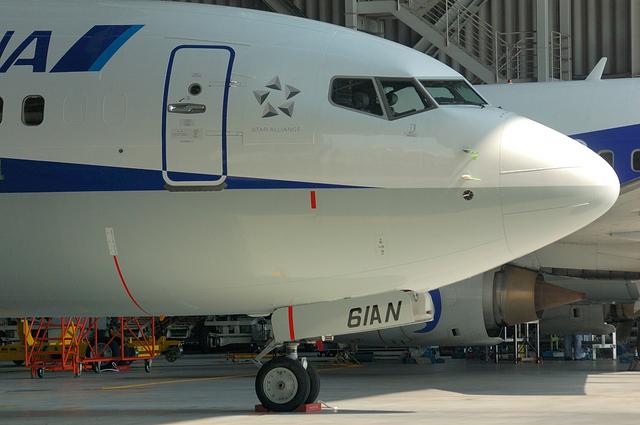 B737-800 JA61AN 10