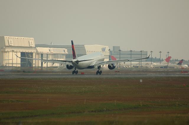 DELTA A330 5