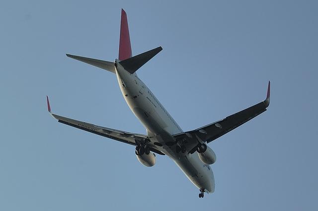 JAL B737-800 5