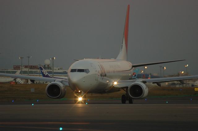 JAL B737-800 2