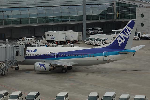 ANA B737 5