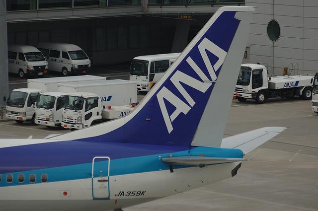 ANA B737 無塗装のラダー