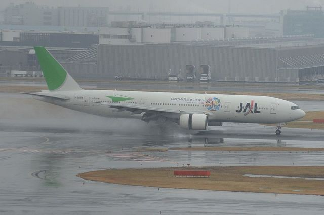 JAL ECOジェット