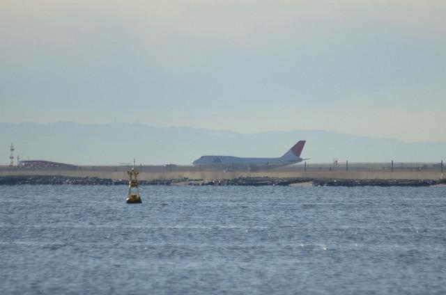 JAL B744D 1