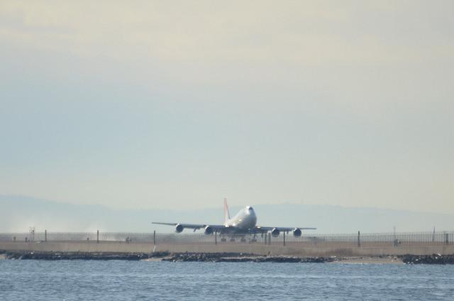 JAL B744D 4