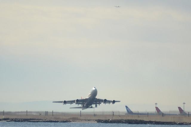 JAL B744D 5