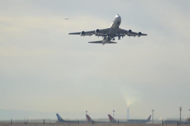 JAL B744D 6