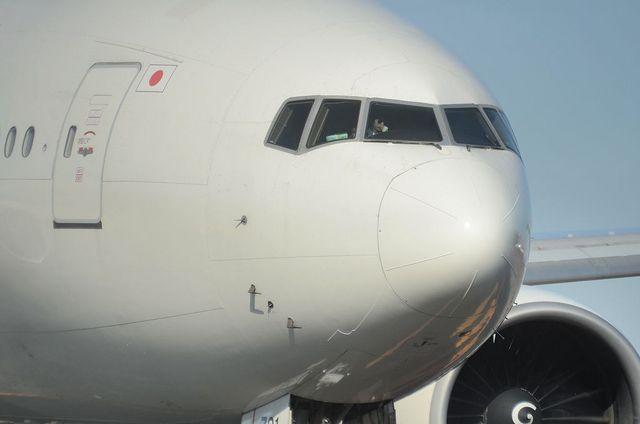 JAL B777 8