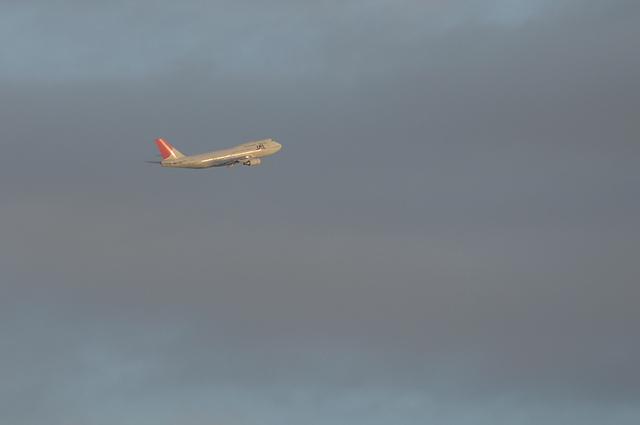 JAL B747 15