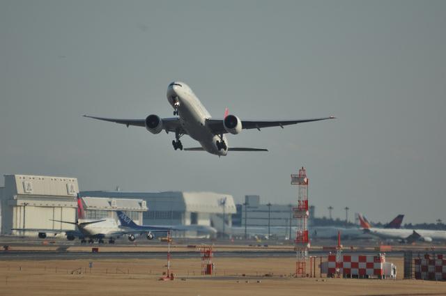 トルコ航空 B773 1