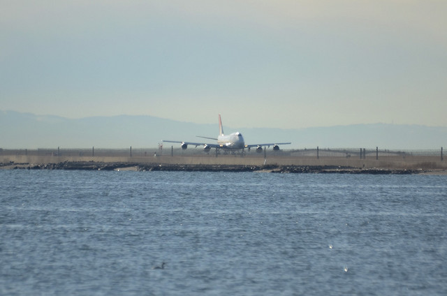 JAL B744D 3