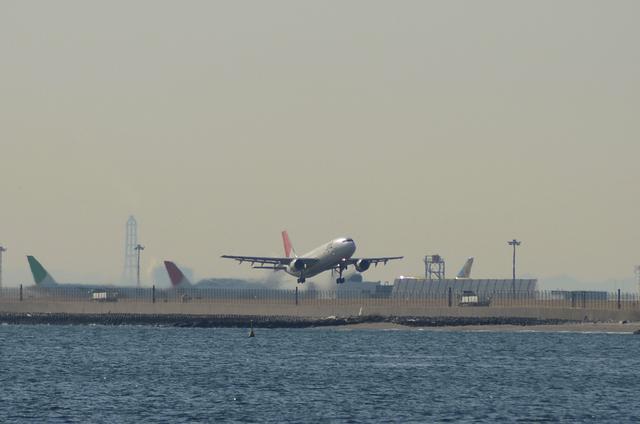 JAL A300 1