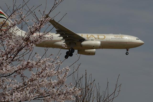 ETIHAD A330-200 3
