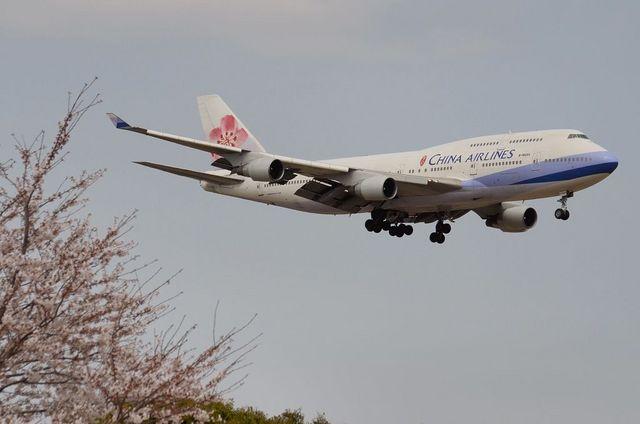 チャイナ・エアラインズのB747-400と桜