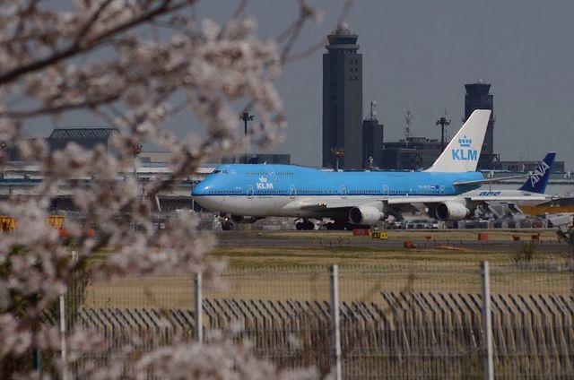 KLMのB747-400と桜