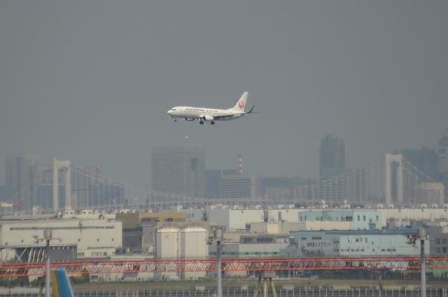 新鶴丸 B737 1