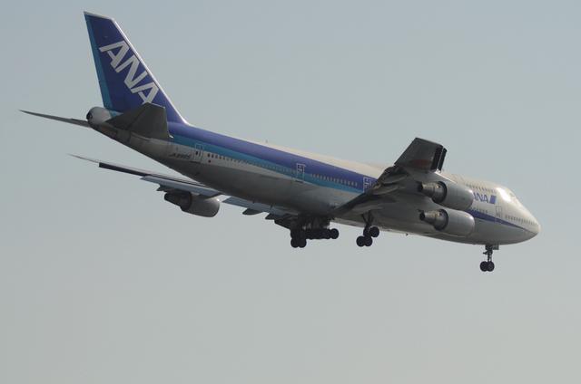ANA B744D 6