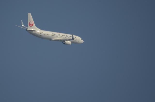 新鶴丸B737 3