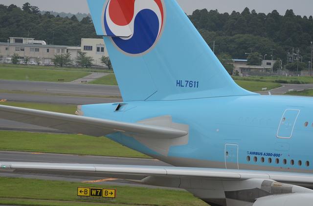 水平尾翼付け根