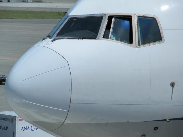 NH056 搭乗直前