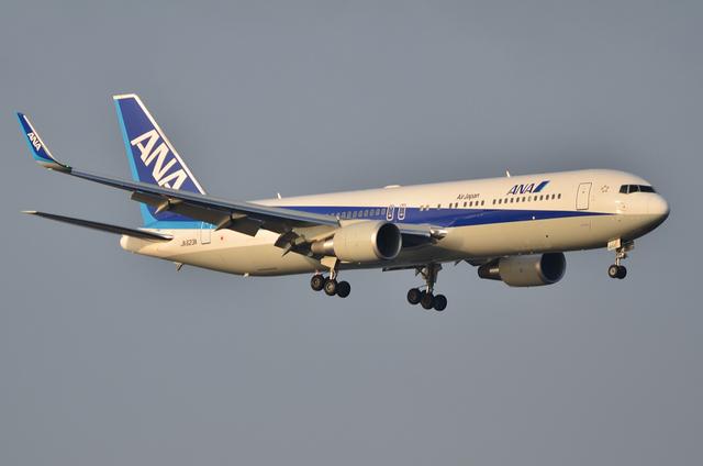 ANA B767WL 2