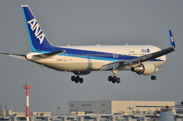 ANA B767WL 5