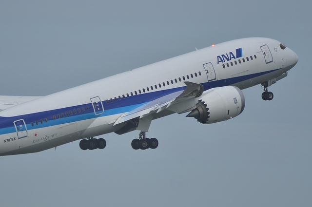 B787 離陸時の主翼のしなり