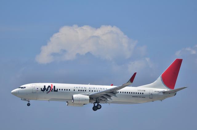 JAL B738 1