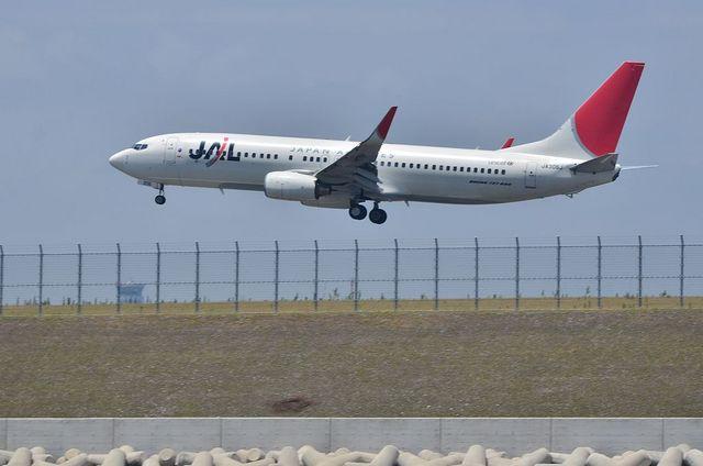 JAL B738 2