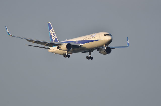 ANA B767WL 1