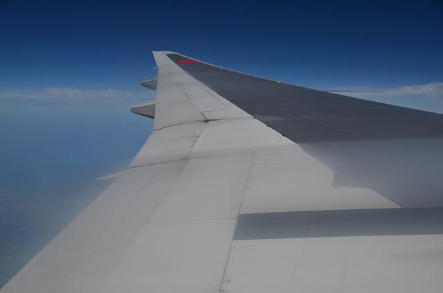 主翼の手前を白い膜が覆う