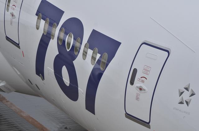 787ペイント