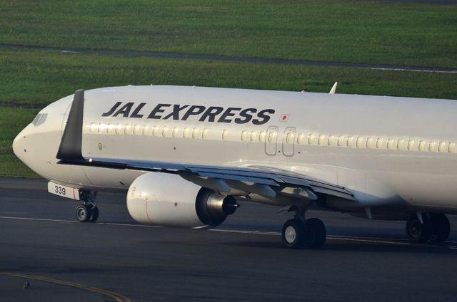 JAL B737 1