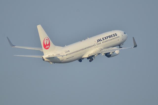 JAL B737 5