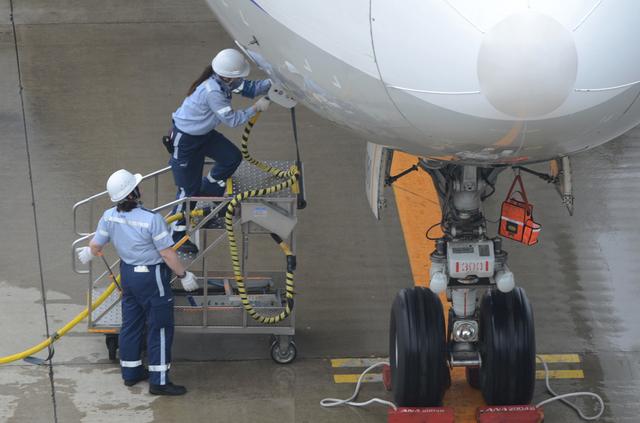 地上電源接続の訓練