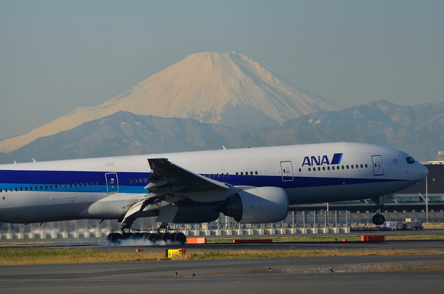 ANA B777