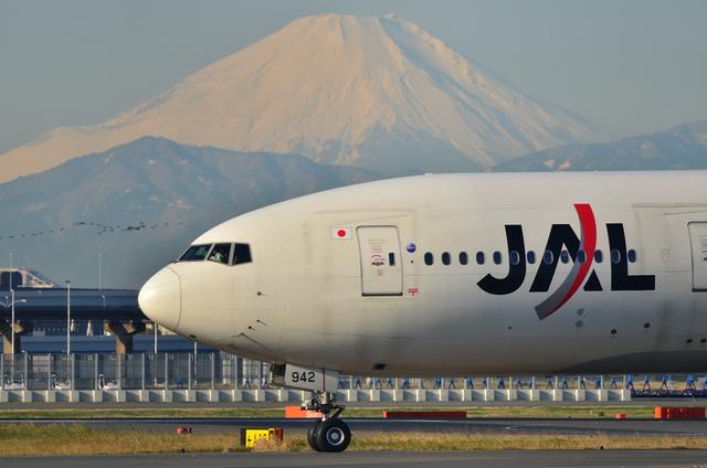B777と鳥と富士山