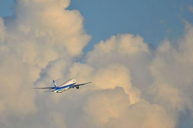 ANA B777離陸