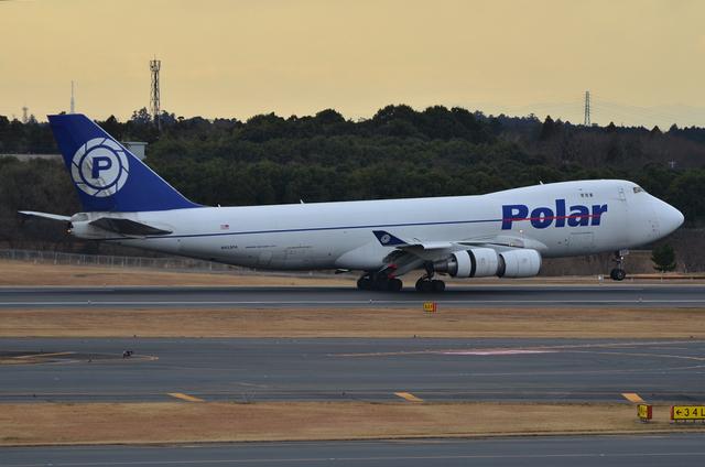 Polar 7