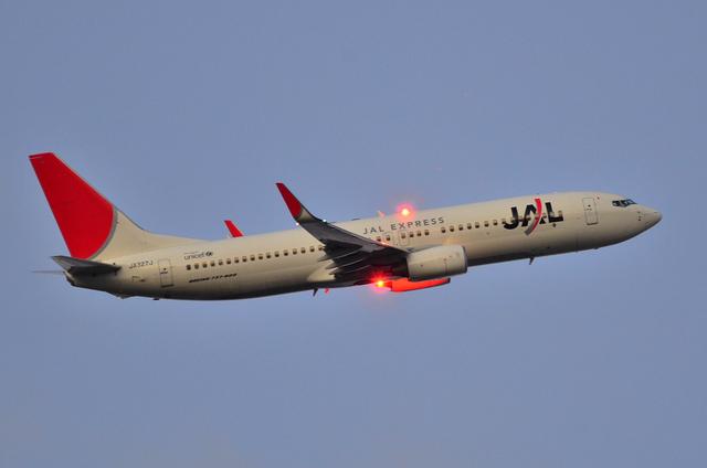 JAL B737 上昇