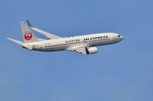 JAL B737 2