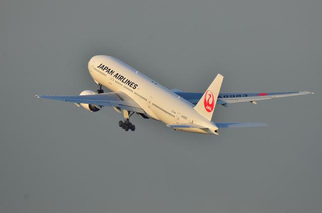 JAL B777 5