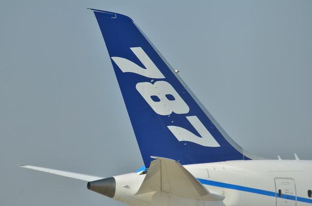 B787 垂直尾翼