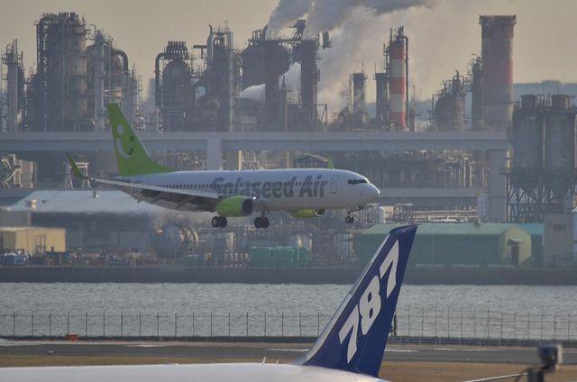 787とソラシドのB737